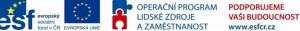 logo_esf1